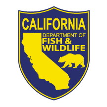 Attorney General Becerra and the California Department of Fish and Wildlife Issue Legal Advisory on Migratory Bird Treaty Act