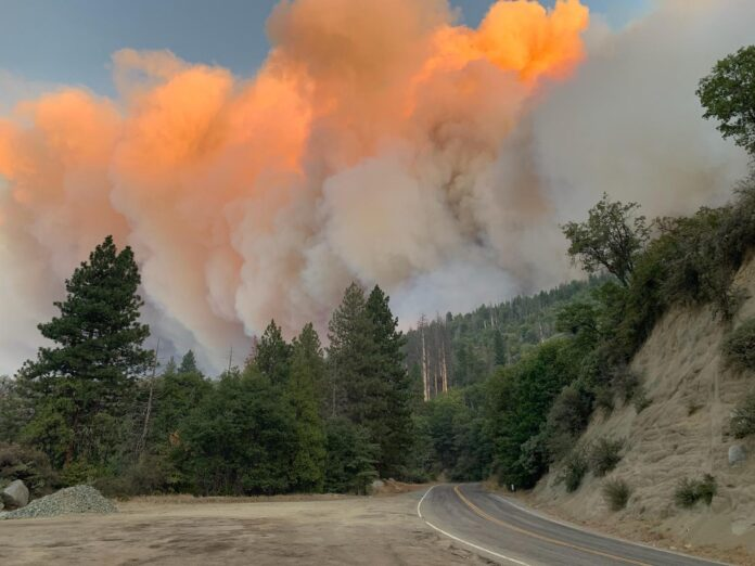 Fire activity along 190 near intersection with 216, 1 mile east of Camp Nelson